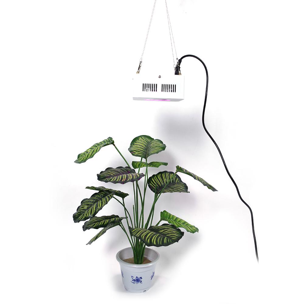 200w cob full spectrum indoor led grow light indoor greenhouse light for veg us ebay. Black Bedroom Furniture Sets. Home Design Ideas